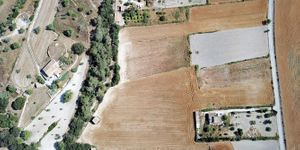 Land with project for house and pool in Montuiri (Thumbnail 3)