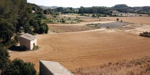 Land with project for house and pool in Montuiri (Thumbnail 1)