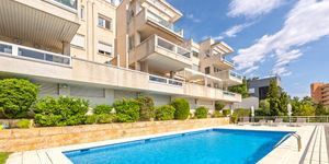 Penthouse in Palma - Renovierte Immobilie mit Meerblick (Thumbnail 6)