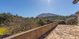 Finca in Escorca - Anwesen zum renovieren im Westen Mallorcas (Thumbnail 2)