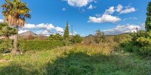 Grundstück in Es Capdellá - Bauland in idyllischer Lage Mallorca (Thumbnail 3)