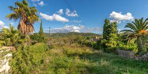 Grundstück in Es Capdellá - Bauland in idyllischer Lage Mallorca (Thumbnail 1)