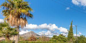 Grundstück in Es Capdellá - Bauland in idyllischer Lage Mallorca (Thumbnail 2)