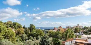 Haus in Palma - Komplettes Gebäude mit drei Wohnungen (Thumbnail 5)