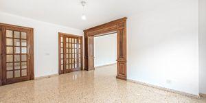 Large apartment to renovate in Palma (Thumbnail 5)