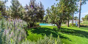 Neuwertiges Penthouse am Golfplatz von Bendinat (Thumbnail 4)