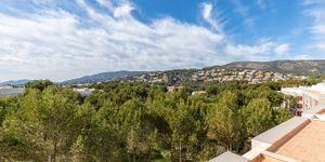 Neuwertiges Penthouse am Golfplatz von Bendinat (Thumbnail 10)