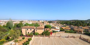 Villa in Palma - Herrenhaus mit viel Potential und Meerblick (Thumbnail 6)