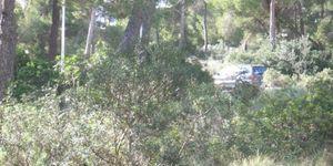 Plot in popular area in Santa Ponsa (Thumbnail 6)
