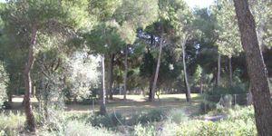 Plot in popular area in Santa Ponsa (Thumbnail 3)