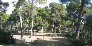 Plot in popular area in Santa Ponsa (Thumbnail 2)