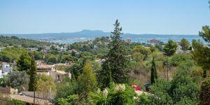 Villa in Genova - Luxusimmobilie mit Meerblick nah an Palma (Thumbnail 4)