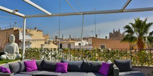 Penthouse in Palma - Luxusimmobilie in der Altstadt (Thumbnail 3)