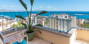 Penthouse in Palma - Top renoviertes Apartment mit Meerblick (Thumbnail 2)