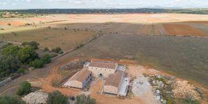Moderne Neubau Finca mit Pool und Weitblick nahe Santanyí - fertig Frühjahr 2021 (Thumbnail 3)