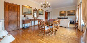 Klassisches Penthouse im herzen von Palma de Mallorca (Thumbnail 3)