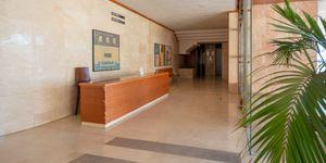 Helles Apartment mit Hafenblick in Palma de Mallorca (Thumbnail 10)