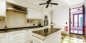 Beautiful apartment with a roof terrace in La Lonja, Palma de Mallorca (Thumbnail 5)