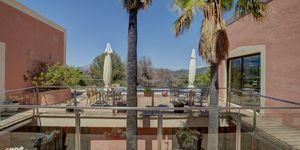 Besondere Immobilie in Santa Ponsa (Thumbnail 5)