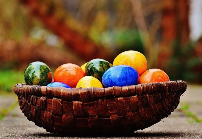 Sind eier gesund