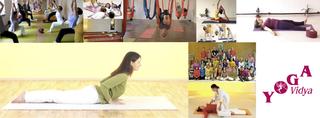 yoga-vidya