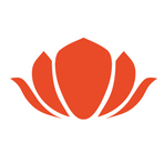 Lotus rot