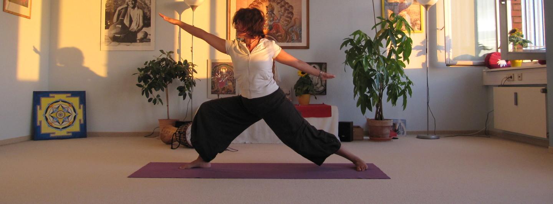 Yoga Vidya Hamburg-Winterhude cover