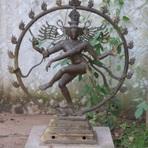 Borntoyoga Yoga für besondere Ansprüche logo