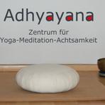 Adhyayanalogo2