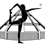 Iyengar yoga logo schwarz
