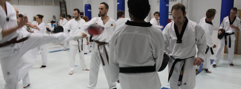 Kampfsportschule Silla cover