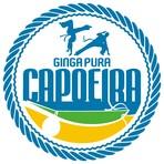 01 ginga pura logo 2014 2farbig 2