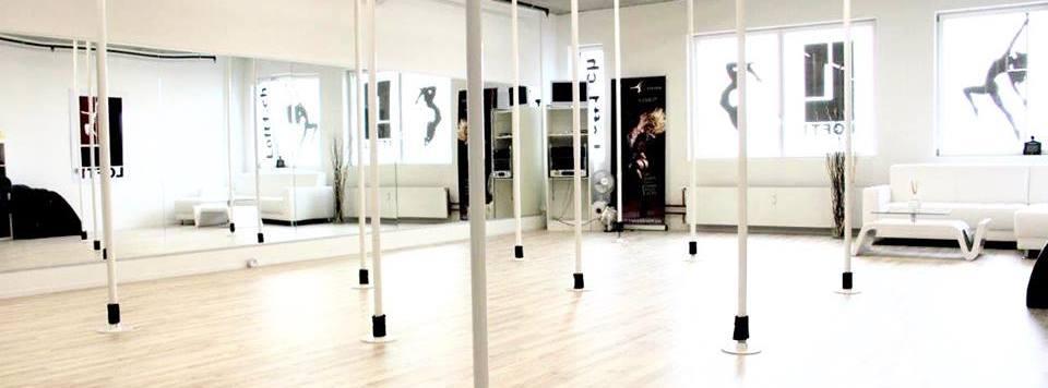 Loft1 Pole-Studio Aarau cover