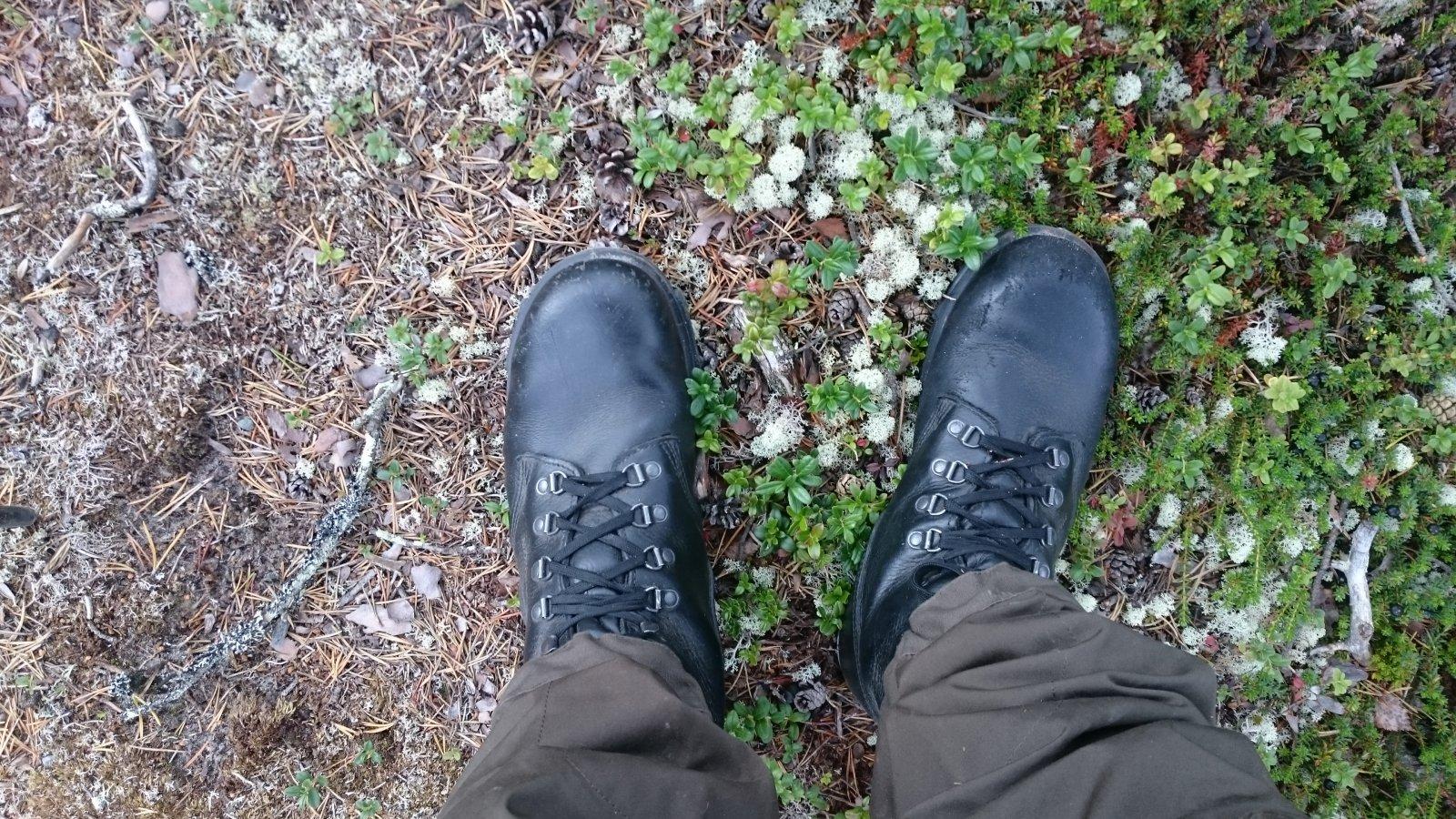 Helt enkle (!) støvler - finnes det  - Fottøy - Fjellforum 0277acbf76c63