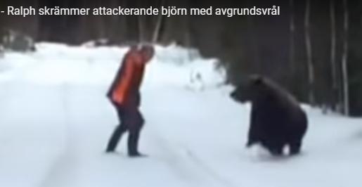 Spesiell opplevelse: Møtte bjørn på treningstur