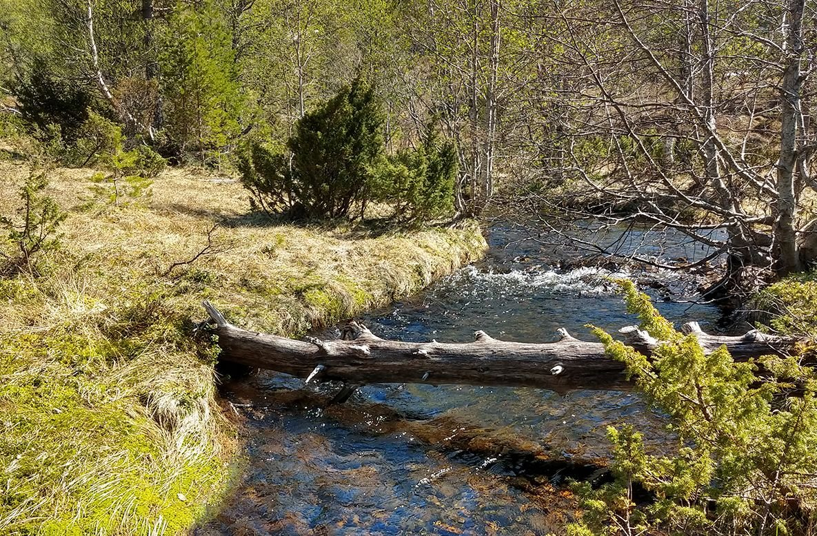 En liten fjelltur på Ertvågsøya Turrapporter Fjellforum