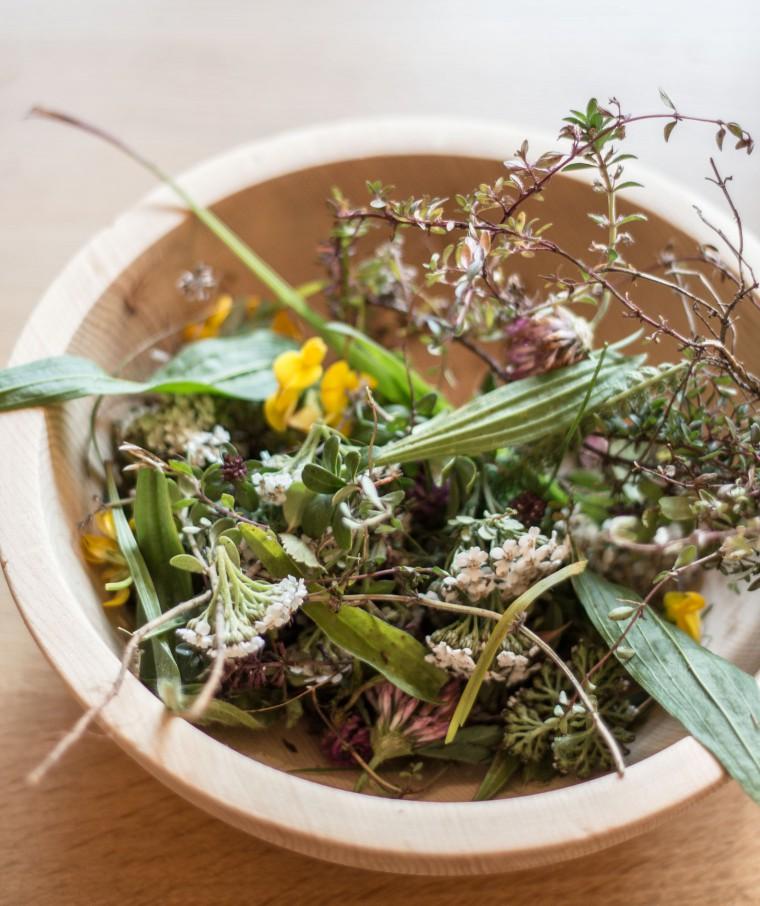 Wildkräuterpesto {flowers on my plate}