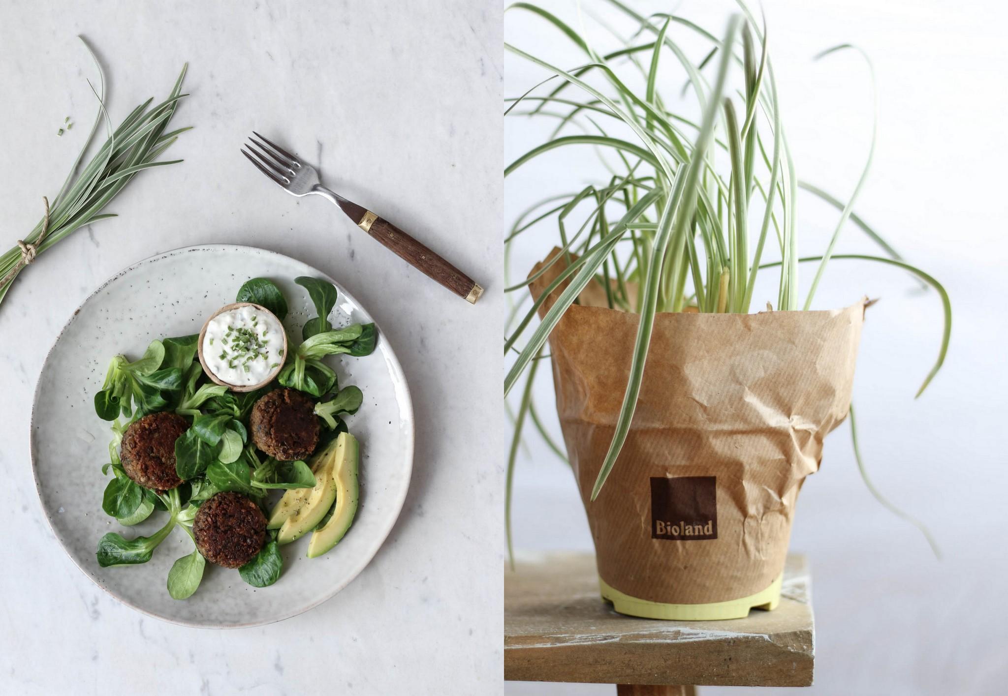 Linsenbällchen mit Knob-Gras Feta Dip {flowers on my plate}