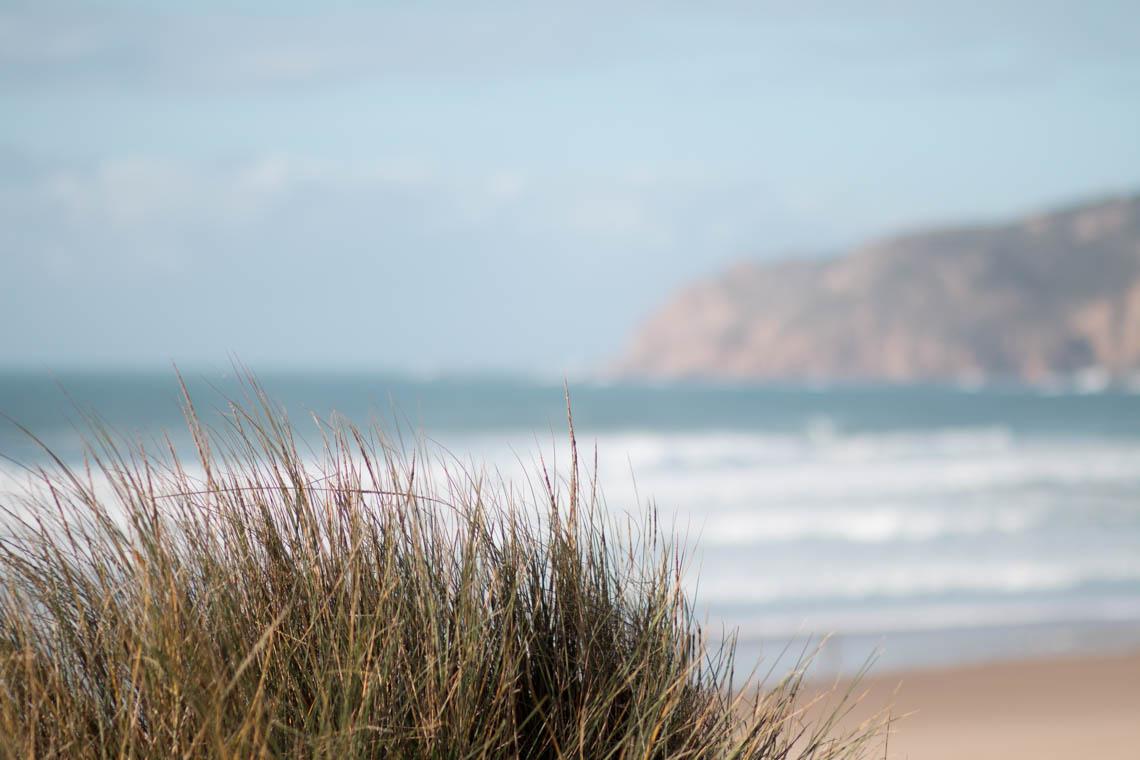 Portugal genießen & entdecken: Atlantik-Küste um Cascais {flowers on my plate}