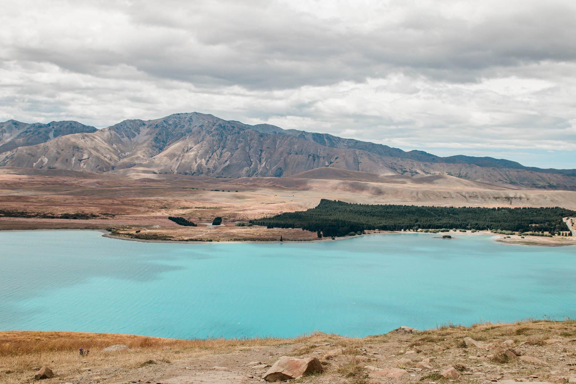 Neuseeland mit Kind, Reisebericht: Lake Tekapo