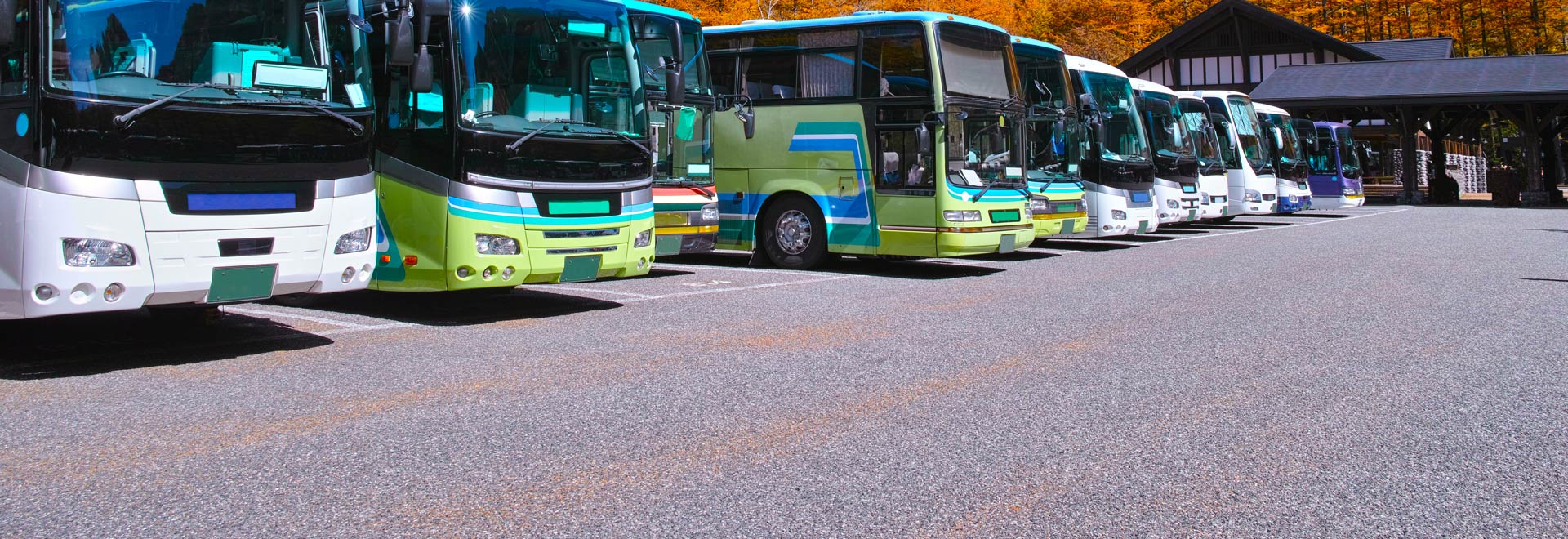 Rent a bus for 20, 50 or more people