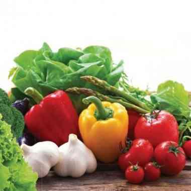 Logo Foodtruck Miteinander vegan