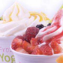 Frozen Yogurt & Softice Truck - Impression3