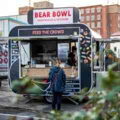 bear bowl - bear bowl