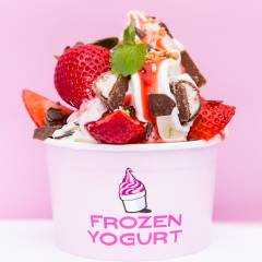 Frozen Yogurt Foodtruck - Impression2