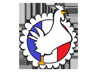 Logo Der Flammkuchenwagen