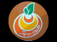 Logo saftstelle