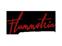 Logo Flammstein
