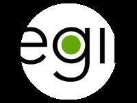 Logo Vegini Foodtruck