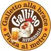 Gallileo- Ex Quadritondo logo